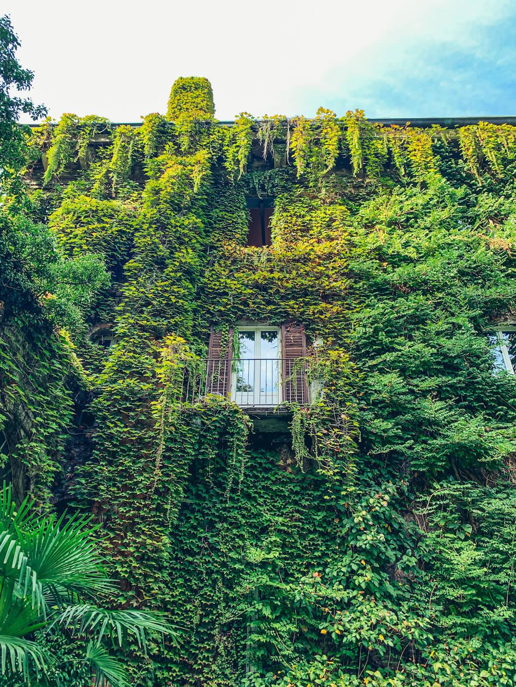 orto botanico di brera aperto