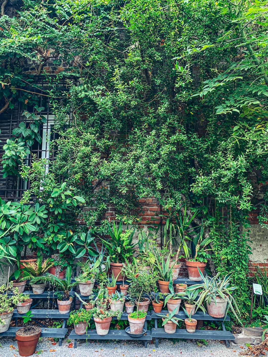 orto botanico di brera come arrivare